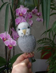 """Budgerigar  Knitted needle felted  life size Budgie  """"Barry"""" by Carol Harrison"""