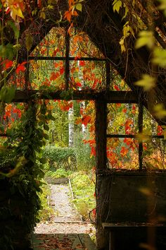 """Oh! Does this ever bring back memories of my """"Greenhouse"""" days for real.."""