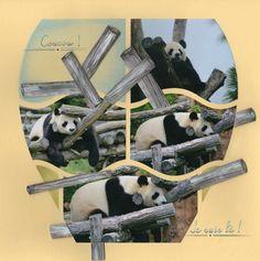 pandas gab essentiel