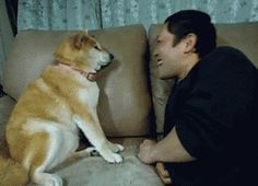 And this dog who taught us about enduring unwanted advances. | The 47 Absolute Greatest Dog GIFs Of 2013