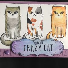 Just One Pretty Piece: PURR-FECT HALLOWEEN - August Stamp Of The Month Blog Hop