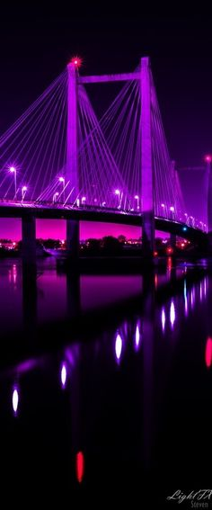 * Cable Bridge ( Ed Hendler Bridge ) Washington