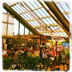 """Workshop """"Agricultura Biológica"""" com mais de 70 participantes. Oferta de um saco de terra de 25 litros da """"Siro"""". – Maio 2013"""