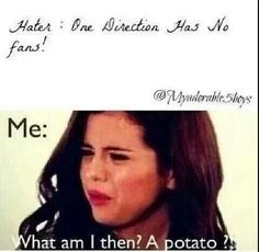 Seriously people!! I'm not a potato! Haters gonna hate...........1D haters don't know the meaning of life though