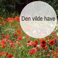Den vilde have - Inspiration og vejledning til den vilde have Natural Garden, Lush Garden, Home And Garden, Back Gardens, Permaculture, Ideal Home, Garden Inspiration, Grass, Outdoor Decor