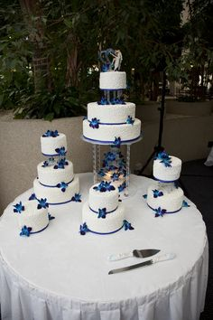 royal blue wedding cake decorated with white chocolate butter cream, satin ice fondant, cornelli lace and blue Singapore orchids Royal Blue Wedding Cakes, Cream Wedding Cakes, Blue Wedding Flowers, Cool Wedding Cakes, Beautiful Wedding Cakes, Wedding Cupcakes, Wedding Favors, Wedding Ideas, Snow Wedding