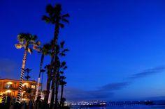 Pacific Beach - San Diego Pacific Beach San Diego, San Diego Beach, Surf, Fair Grounds, Clouds, Travel, Outdoor, Outdoors, Viajes