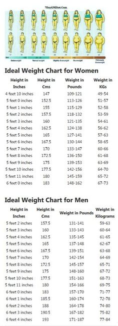 Height To Weight Chart  Pinterest  Height Weight Charts -1343