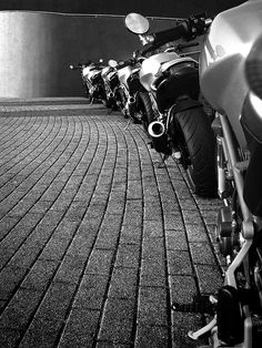 Ducs In the Wild - Cool Pics