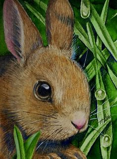 ACEO Miniature Art Print Bunny Rabbit Melody Lea by MelodyLeaLamb, $6.25