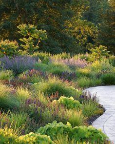 Love the plants Jones Road - contemporary - landscape - st louis - Adam Woodruff + Associates, Garden Artisans