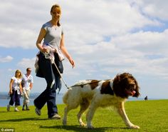 The strongest data comes from studies which show that dog owners walk far more than other people. Description from capitalbay.com. I searched for this on bing.com/images