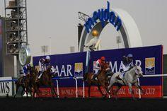 TM Fred Texas wins in Dubai