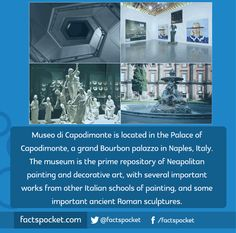 FACTS POCKET | Museo di Capodimonte is located in the Palace of...