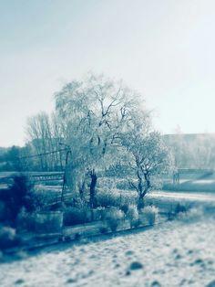 Let it snow ~ ❄