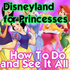 Disneyland for Princesses - great info on where to eat, rides to ride, photography tips and details in getting princess makeovers