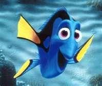 Me in Fish form !! kingsrfun