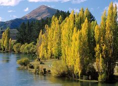 Lago Wanaka, Nueva Zelanda