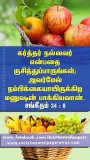 Pin On Bible Verse