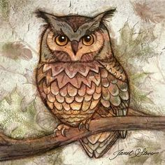 Earth Owl II -  by Janet Stever there are 4 of these in ensemble