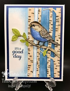 Hi stampers! I guess you could say a little blue bird told me to make this card. Today as Spring is in full bloom around us, I saw a little blue bird and it inspired this card. I don't know my bird species, but he was small like a finch and just bright blue & chatting …