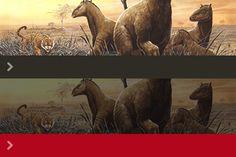 Evolution des espèces : une approche historique intéressante, des ressources pour tous les niveaux. Source : CNDP - CRDP  Ajouté par Sophie