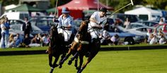 Ascot Park Polo Club - Polo Tuition, Corporate Hospitality and Events, Teambuilding Days, Polo Sponsorship, a leading force in Women's Polo