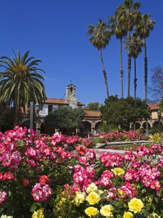 The San Juan Capistrano Mission is a beautiful place to explore and visit. Head down the 5 freeway for a short 20 minute drive. #ChapmanU #SoCal