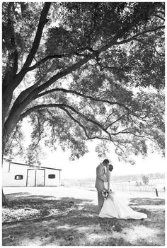 Nash Farm Park Hampton Ga Http Visithenrycountygeorgia Celebrate Weddings Facilities Embrace Your Moment Pinterest Wedding And