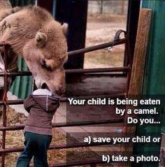 Tough choice......
