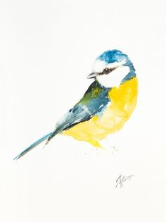ARTFINDER: Blue tit (Parus caeruleus) by Andrzej Rabiega - Blue tit - watercolor