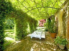 Garden terrace - maison de Provence  Awesome canvas