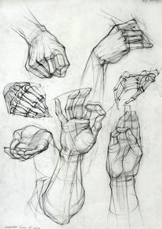 Anatomy Drawing Tutorial Old master drawings, construction, synthetic form and Glenn Vilppu. - Page 2 Anatomy Sketches, Drawing Sketches, Art Drawings, Sketching, Sketches Of Hands, Nursery Drawings, Body Sketches, Hand Anatomy, Anatomy Art