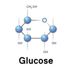 Glucose Leptin Levels, Ischemic Heart Disease, Subcutaneous Tissue, Personalized Medicine, Adipose Tissue, Body Cells