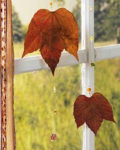 Aus gesammelten Blättern wird ein schöner Blätterregen :-)
