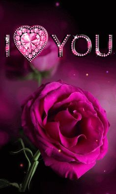 I Love You love flowers heart animated romantic love quote romance gif i love you sweetheart romance movies valentine's day movie quotes red rose valentine I Love You Images, Love You Gif, Love Pictures, My Love, Romantic Love, Beautiful Love, Gif Rose, Love Flowers, Beautiful Flowers