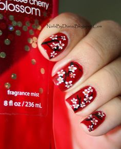 Cherry blossoms with red background