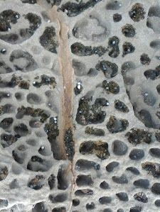 photos from weekend at Lorne - wave cut platform - weathered