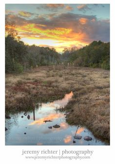 Lowland Marsh at Sunset near Mobile Bay, Theodore, Alabama