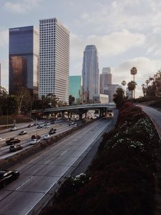 Los Angeles / photo by alphalight  - nice city but kind of overrated ;)