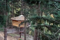 5. Cabanes Als Arbres, Spain Find some elusive peace and quiet at this tranquil natural paradise way up in the tree tops! This treehouse hotel offers guests the pleasures of being in constant touch with the gorgeous foliage and enchanting ecosystem. Plus, you'll also get to experience one of the most breathtaking views of the …