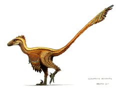 Dinosaurs.  I know this is part of the raptor family, so let's just say it is Velociraptor.
