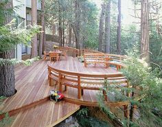 round deck among pines