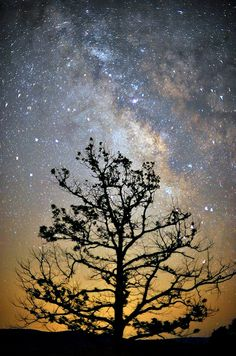 Wonderful night sky