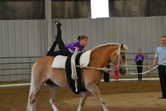 Freestyle Trick Riding, Chunky Monkey, Riding Lessons, Future Goals, Acro, Vaulting, Beautiful Horses, Equestrian, Roman