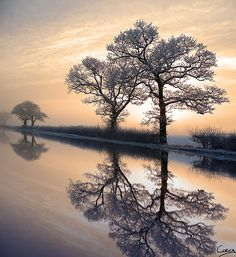 Winter Sunset in Pickering, North Yorkshire, England. Nature Landscape, Winter Sunset, Winter Scenery, North Yorkshire, Yorkshire England, Yorkshire Dales, Mirror Image, Cool Landscapes, Nature Images