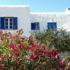 Beachfront peaceful traditional family property                            Naoussa Paros Greece                                                                       Airbnb