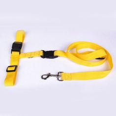 Runners World Certified Dog Leash