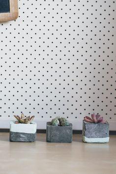 DIY Concrete Succulent Planters-5