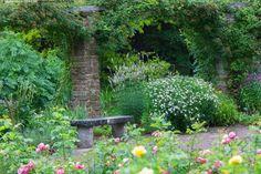 Visbyn kasvitieteellinen puutarha - ruusu kukka kukkia puutarha kivipenkki kasvitieteellinen pilari pensas pensaita vihreys